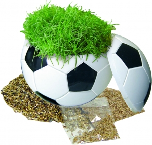 Вазон Crazy Football